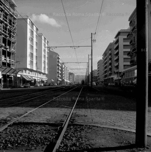 romasparita_10045.jpg
